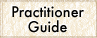 Practitioner Guide
